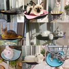 貓咪窗臺吊床秋千玻璃吸盤式 四季貓窩貓爬架貓跳臺  快速出貨