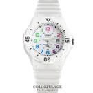 CASIO卡西歐 夏日繽紛全白電子手錶腕表 女孩小巧運動錶款 有保固【NE1280】原廠公司貨