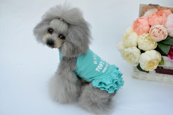 吊帶公主裙 寵物衣服春夏裝 泰迪約克夏狗狗衣服