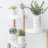 多肉仿真植物 ins北歐盆栽仙人掌綠植裝飾假花桌面小擺件室內客廳 KV1792 【野之旅】