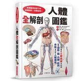 (二手書)人體全解剖圖鑑:專業醫學背景下的基礎剖析,完整說明!