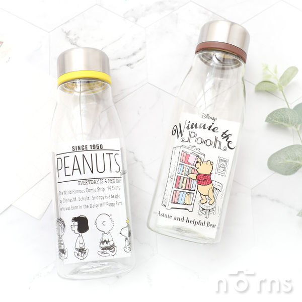 【日貨Skater透明水壺 PTY5童趣系列】Norns 500ml 隨身瓶 牛奶瓶 水瓶 環保杯 迪士尼 維尼史努比