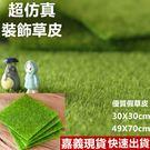 【現貨】【49X70cm】超仿真假草皮 ...