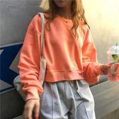 秋裝女裝新款韓版短款字母無帽套頭連帽T恤寬鬆長袖T恤上衣學生 衣櫥秘密
