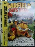 影音專賣店-P01-190-正版DVD-動畫【加菲貓:大明星歷險記】-國英語發音