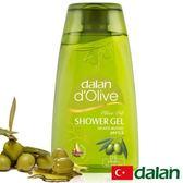 【土耳其dalan】頂級橄欖油PH5.5沐浴露 250ml
