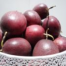 好健康水果 埔里大坪頂 10斤好吃的百香果 叫我第一名 掛網專業栽種