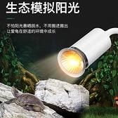 烏龜曬背燈加熱補鈣殺菌保溫太陽燈uva uvb爬寵陸龜三合一全普光 風尚