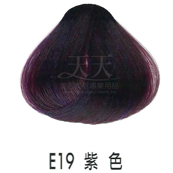 【專業推薦】耐婷 亮彩染髮劑 E19-紫色 60g [73043]