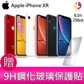 分期0利率 Apple iPhone XR 256G 防水旗艦智慧型手機 贈『9H鋼化玻璃保護貼*1』