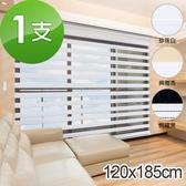 加點 120*185cm 時尚DIY電動斑馬紋遮光窗簾珍珠白120*185cm