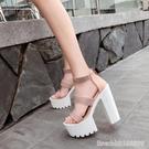 涼鞋 歐美夜店dj酒吧女歌手ds演出鞋子交叉帶15cm粗跟超高跟防水臺涼鞋 星河光年