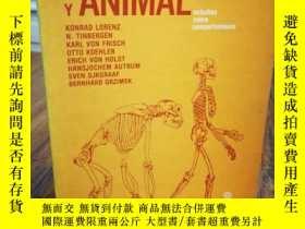 二手書博民逛書店Hombre罕見y animal, estudios sobre