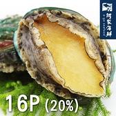 【阿家海鮮】熟凍帶殼鮮凍鮑魚(16顆/1kg±10%/包) 20%冰