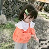 童裝女童毛衣寶寶針織衫兒童娃娃領上衣韓版【左岸男裝】