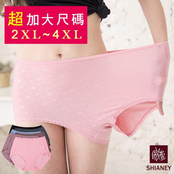 女性 MIT舒適 超加大尺碼內褲 (40-46吋腰圍可穿) 孕媽咪可適穿 2XL-3XL-4XL 台灣製造 No.1106-席艾妮SHIANEY