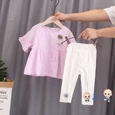 套裝 棉質女童裝女寶寶夏裝小孩嬰幼兒童1衣服2小童3夏季短袖套裝4周歲 2色