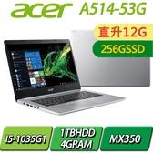 【12G記憶體升級版+256SSD】A514-53G-58AL銀I5-1035G1/12G/256SSD+1TBHDD/MX350/14