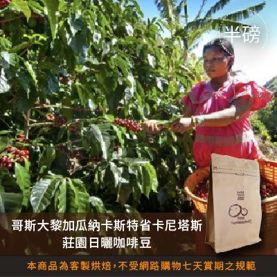 【咖啡綠商號】哥斯大黎加瓜納卡斯特省卡尼塔斯莊園日曬咖啡豆(半磅)