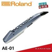 【金聲樂器】Roland Aerophone mini AE-01 電吹管 數位吹管 AE01