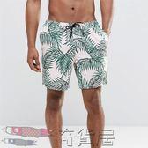 男士四分沙灘褲大碼速干泳褲