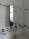 【麗室衛浴】不銹鋼鏡櫃  PHJ016  90度開門  尺寸:460*660*120mm  有分左開門及右開門