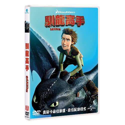 馴龍高手 (DVD)How to Train Your Dragon (DVD)