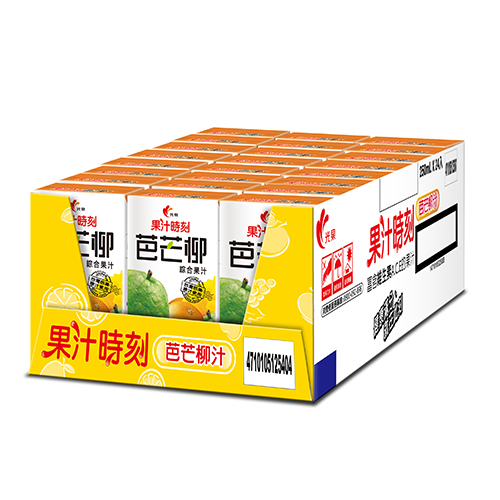 光泉果汁時刻-芭芒柳汁250ml*24入/箱【愛買】
