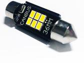 雙尖36mm解碼室內燈 canbus