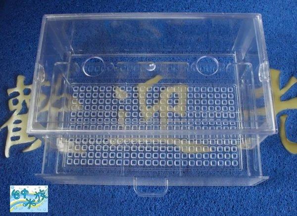 [ 台中水族 ]Leilih 鐳力-專利壓克力抽屜滴流盒  特價 便當盒