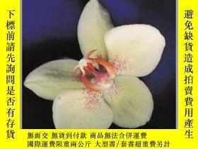 二手書博民逛書店Orchid罕見Thief-蘭花賊Y436638 Susan Orlean Random House USA