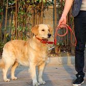 中型大型犬狗狗牽引繩帶金毛拉布拉多牛皮項圈遛狗繩子狗鏈子用品   蜜拉貝爾