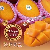 沁甜果園SSN.屏東夏雪芒果5-6顆裝/2.5kg,(共二箱)﹍愛食網