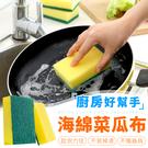 【G0615】《雙面雙效!去污更強》海棉菜瓜布 洗碗菜瓜布 清潔海綿 洗碗海綿 廚房清潔