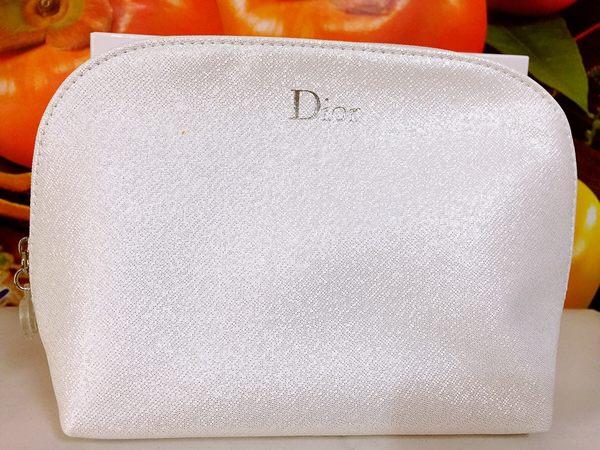 DIOR 全新 雅緻 迪奧化妝包 高雅精緻 宴會手拿包 有DIOR標誌 ☆全新百貨專櫃貨