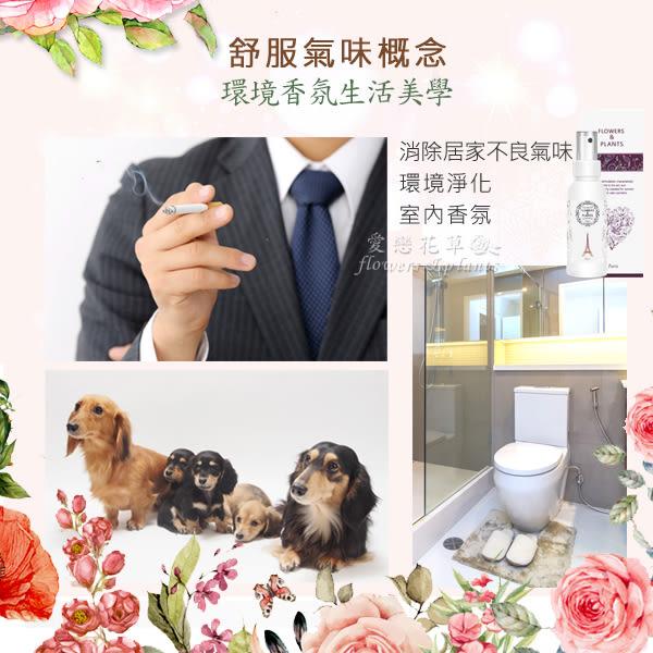 【愛戀花草】伊蘭花+玫瑰+夜來香+桂花 花草噴霧香氛精油(250ML / 四瓶組)