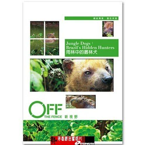 【停看聽音響唱片】【DVD】 雨林中的叢林犬
