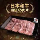 【屏聚美食】日本A5和牛燒烤片1盒(100g/盒)-任選