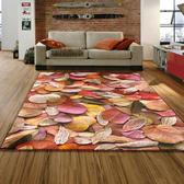 【范登伯格】專業3D印染絲質地毯 葉子 115x170cm