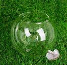 15cm 圓形玻璃小魚缸平底魚缸 微景觀...