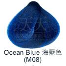 【特殊色專家】果酸彩色染髮霜 85ml (M08_海藍色) [40803]