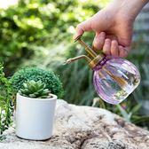 多肉植物澆水壺灑水瓶