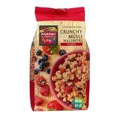 智慧體 德國 野莓燕麥脆片 (375G) 一包
