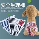 寵物狗狗生理褲安全衛生褲月經褲母狗生理期衛生褲子【櫻田川島】