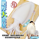 【海肉管家】特級鮮Q甜肥厚大花枝x1包入(400g±10%/ 1隻包)