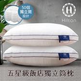 【Hilton 希爾頓】五星級純棉立體銀離子抑菌獨立筒枕/二色任選白色