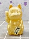 【震撼精品百貨】招財貓_招き猫~日本招財貓風水貓擺飾-金*00131