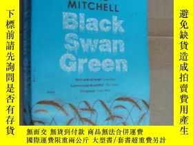 二手書博民逛書店Black罕見Swan GreenY146810 David M
