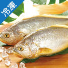 特大等級富貴黃魚600g+-5%/尾【愛買冷凍】