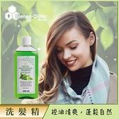 德國Bienen-Diatic蜂蜜蕁麻控油洗髮精250ml